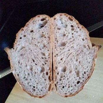 Ah Huat  Purple wheat + roasted maize second slice