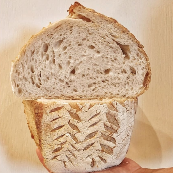 Ambarabà Bread first overview