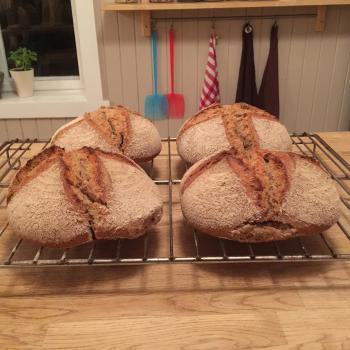 Anders´slash and burn rye mix Emmer/Dala Landwheat bread second overview