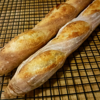 Audrey Junior Baguettes  first overview