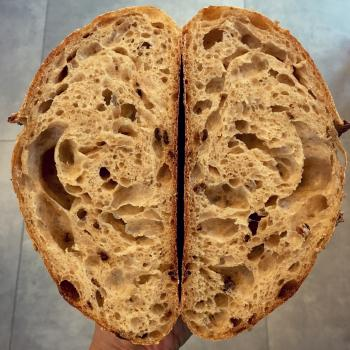 Autumn Soft bun, challah bun, panettone, malted grain sourdough second slice