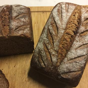 Barbara Whole wheat breads second overview