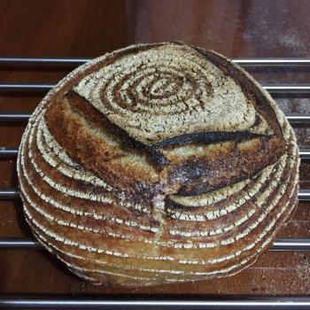 Baron Basic Country Bread first overview
