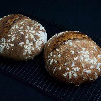 blondie wheat bread second slice