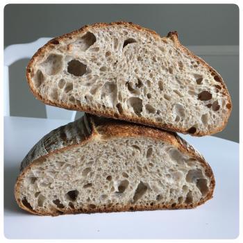 Borneo Starter Breads, Pizza, Babka, Morning Buns second overview
