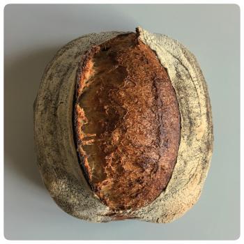 Borneo Starter Breads, Pizza, Babka, Morning Buns first slice