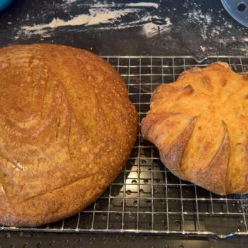 Brød Mor Bread first overview