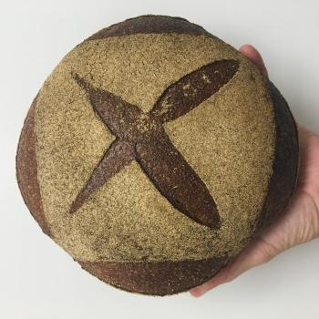 Cambio Edison Wheat Bread first overview