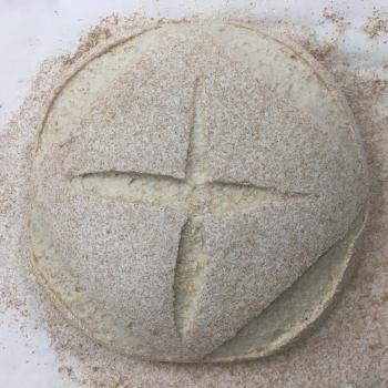 Cambio Edison Wheat Bread second slice