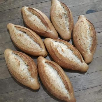Conchita Whole wheat Bolillo Sourdough first slice
