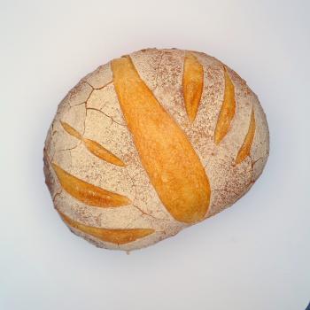 DELTA SAN FRANSICO SOURDOUGH  second slice
