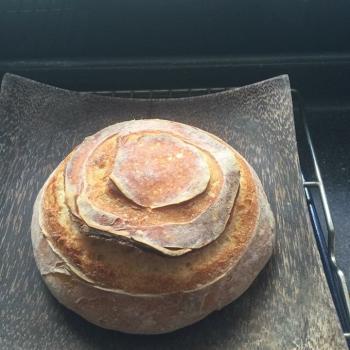 Fat Piggy Sourdough Tartine and plain bread first overview