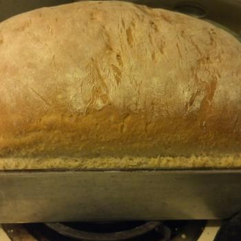 Festering Scourge Sourdough Beer Bread first overview
