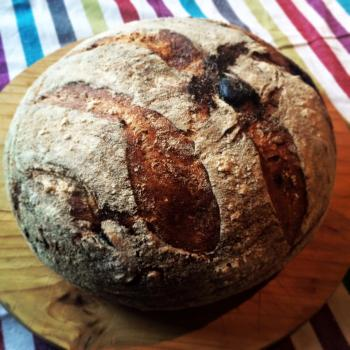 Fig & Fennel Sourdough Bread, pancakes, yorkshire pudding, quick breads first overview