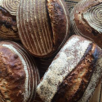 Fig & Fennel Sourdough Bread, pancakes, yorkshire pudding, quick breads second slice