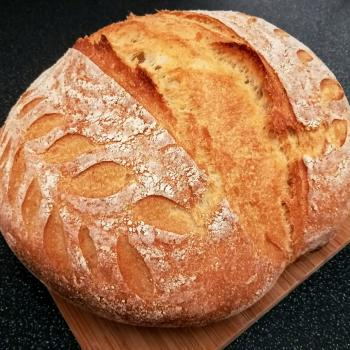 Gaia Basic bread first overview
