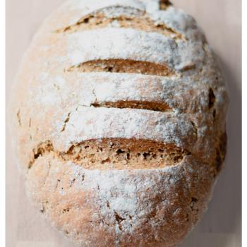 gingeryeast Probiotic fermented bread second overview