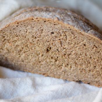 gingeryeast Probiotic fermented bread first slice