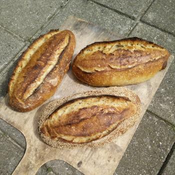 greek yogurt  bread first overview