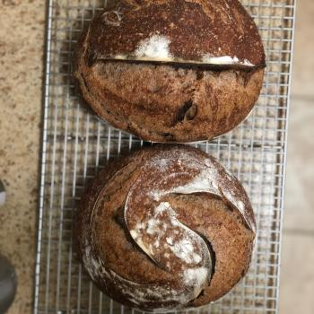 Ima Black Corn Whole Wheat Bread first overview