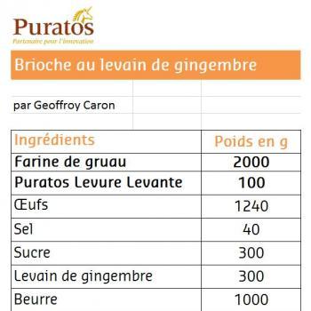 Levain au gingembre Brioche second overview