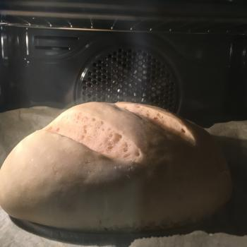 Lulu Sourdough loaf first overview