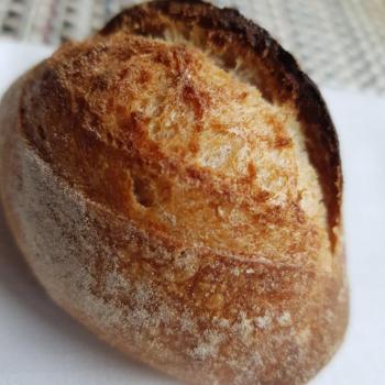 Mang Collar's Sourdough Classic Sour Dough rolls second overview