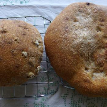 manna sourdough Noni Nawruzi or walnutbread second overview