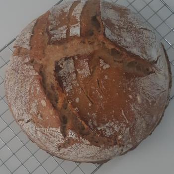 Melchior Bread first overview