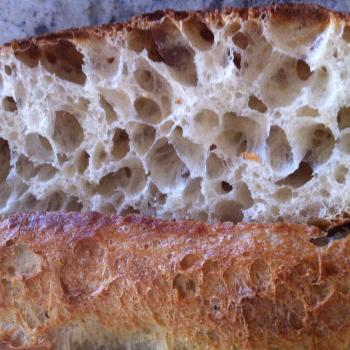 Niavel Sour Dough Baguettes and Bread first overview