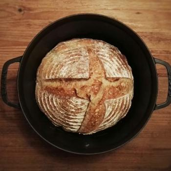 October White Sourdough Everyday Bread first overview
