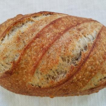 Olive Sunny Sourdough first overview