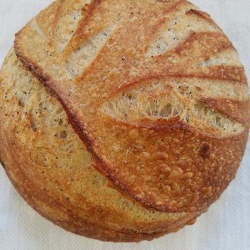 Olive Sunny Sourdough second overview