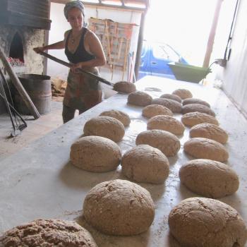 Pão com Alma Gluten Free Bread, Carob bread, Spelt Bread, Rye Bread, Mix Bread with seeds second overview