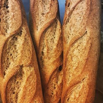 pão de nuvem SOURDOUGH BREADS first overview