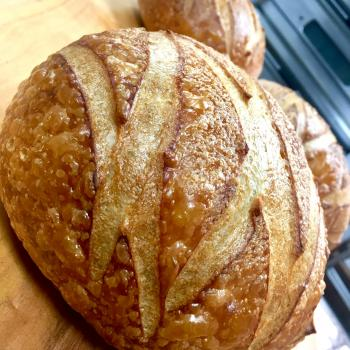 PURA VIDA MAE difrents Bread second overview