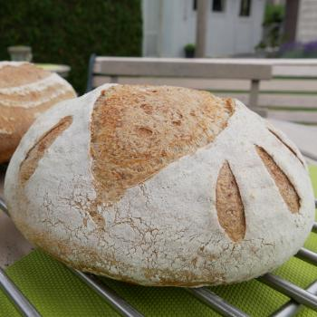 Roger Basic Sourdough Bread first overview