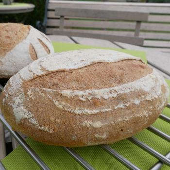 Roger Basic Sourdough Bread second overview
