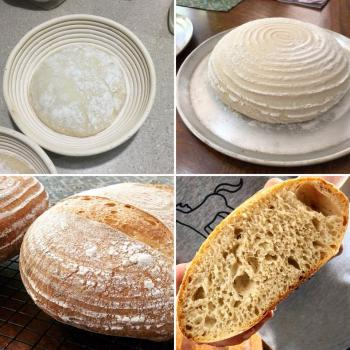 Sammy Basic Round Loaf second overview