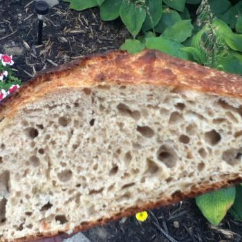 Sebstian sandwich bread first overview