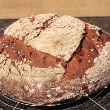 September starter Sourdough beetroot bread first overview