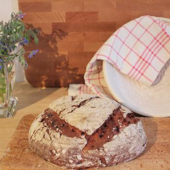 September starter Sourdough beetroot bread second overview