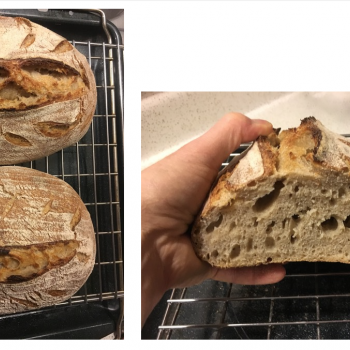 Starvin' Marvin Walnut/Apricot/Red Quinoa Sourdough Bread second overview