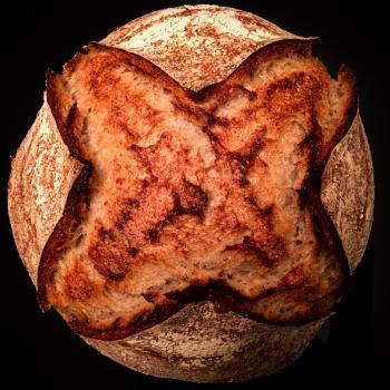 terra Sourdough bread first overview