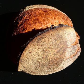terra Sourdough bread first slice
