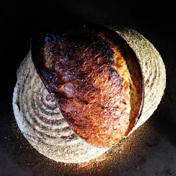 terra Sourdough bread second slice