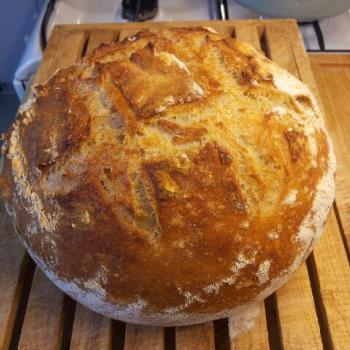 The Creature (Mark II) Worlds easiest and most delicious dutch oven bread second overview