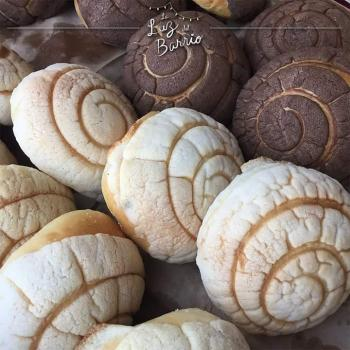 The son Conchas sweet Mexican bread first overview