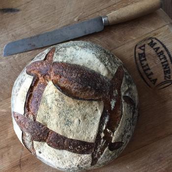 The Sourdough School  Sourdough bread, cakes & pastries.  second slice