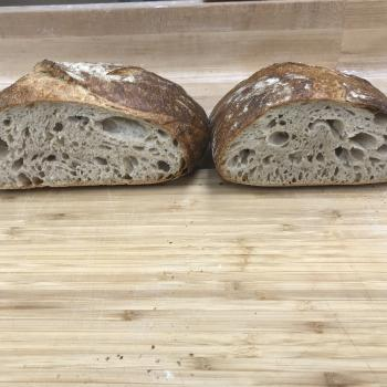 The starter Sourdough bread first overview